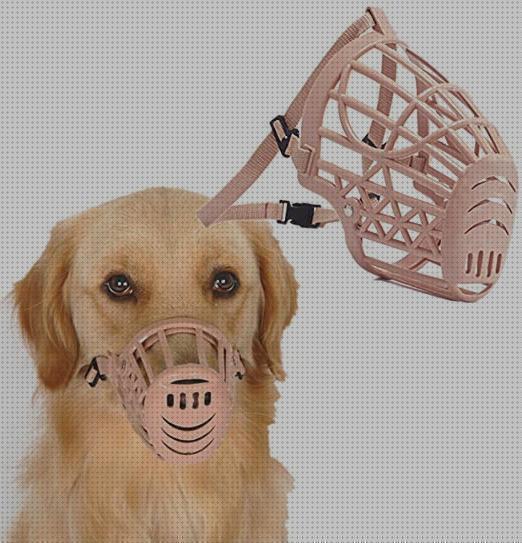 Bozal para Perro Ajustable y Suave para Evitar Que Muerda Mastique y Ladre M,Negro ILEPARK Bozal para Perros Cubierto con Malla Transpirable y Nailon Duradero