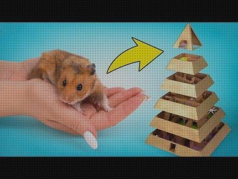 Review de hamster piramide